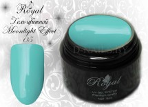 Цветной гель Royal Moonlight Effect 5 ml №05